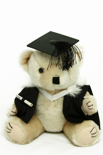 0000335_bachelor_graduation_bear_faculty_of_arts_and_social_sciences