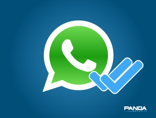 whatsapp call and messages