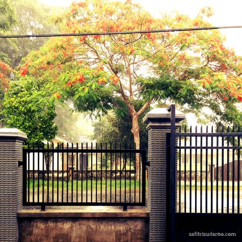 parents house kediri
