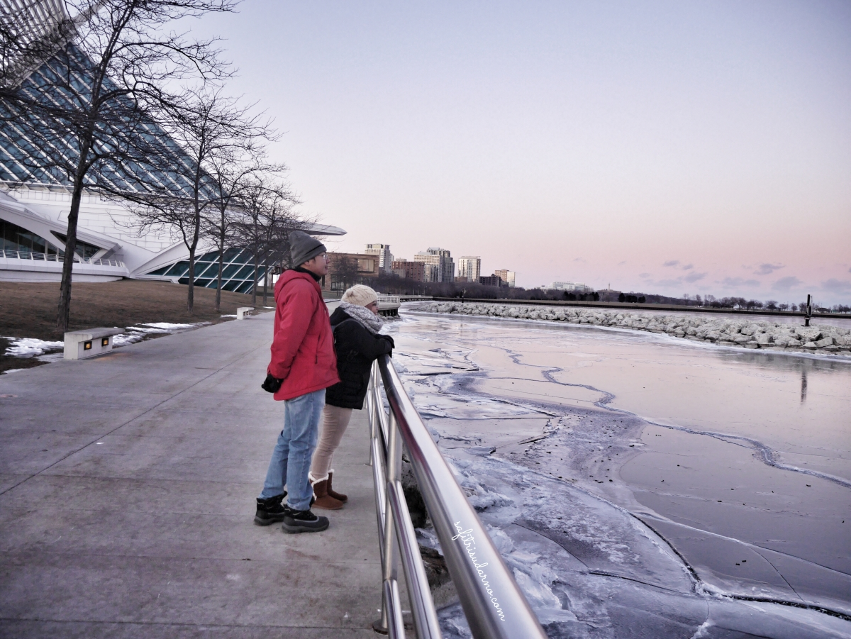 Frozen Michigan Lake